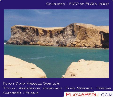 Ica Mendieta Paracas